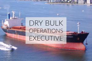 Job Opening for a Dry Bulk Operations Executive